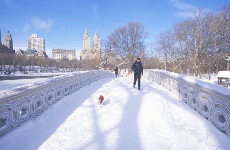 Mannen och hans hund går med den röda tröjan över den ärke- bron i ny insnöad Central Park, Manhattan, NY arkivfoton