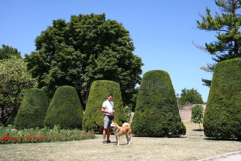 Mannen och hunden parkerar offentligt arkivbilder