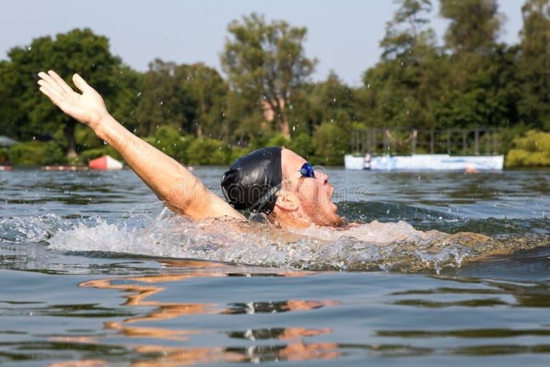 Mannen simmar ryggsim i en simbassäng royaltyfria foton
