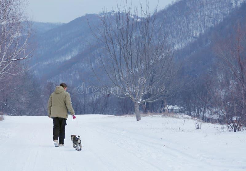 Mannen som går med en hund i molnig vinterdag royaltyfria foton