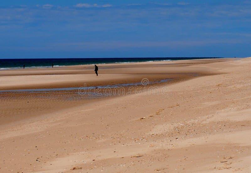 Mannen som går på stranden på Praia, gör Barril Tavira Portugal fotografering för bildbyråer