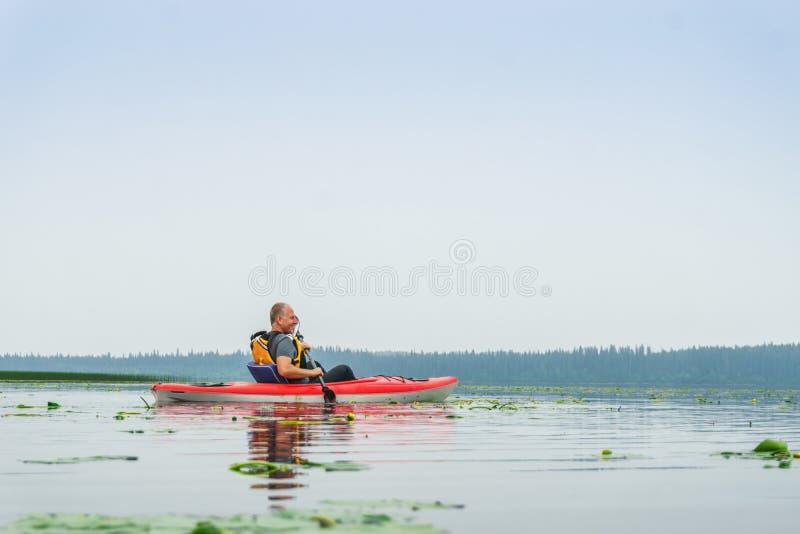 Mannen som paddlar kajaken bland lilja, blommar på sjön arkivfoto