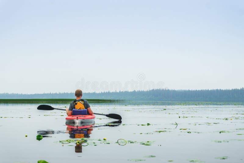 Mannen som paddlar kajaken bland lilja, blommar på sjön royaltyfria foton