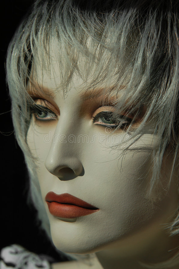 Free Mannequin In Montreal, Canada 2 Royalty Free Stock Photos - 1107248