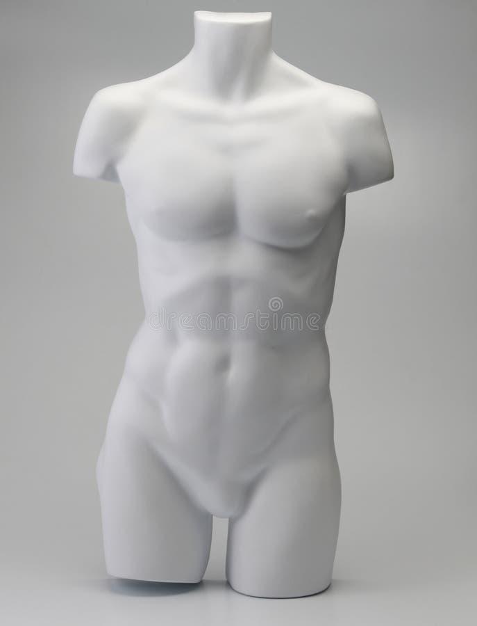 Mannequin maschio fotografia stock libera da diritti