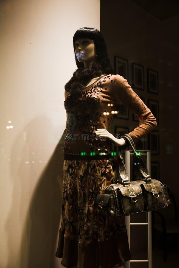 Download Mannequin Nella Finestra Di Memoria Fotografia Stock - Immagine di vestito, bellezza: 7311288