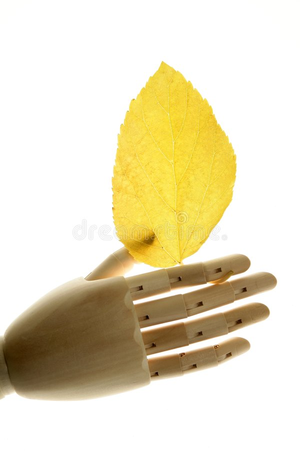 Mannequin Wooden Hand Holding Autumn Yellow Leaves Royalty Free Stock Photography