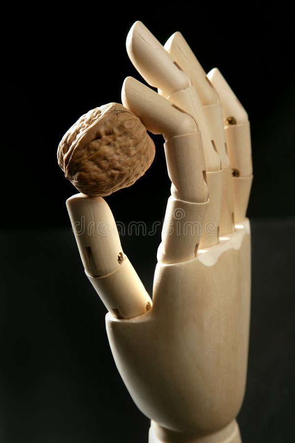 Download Mannequin Wooden Hand Holding One Walnut Stock Image - Image: 7556435