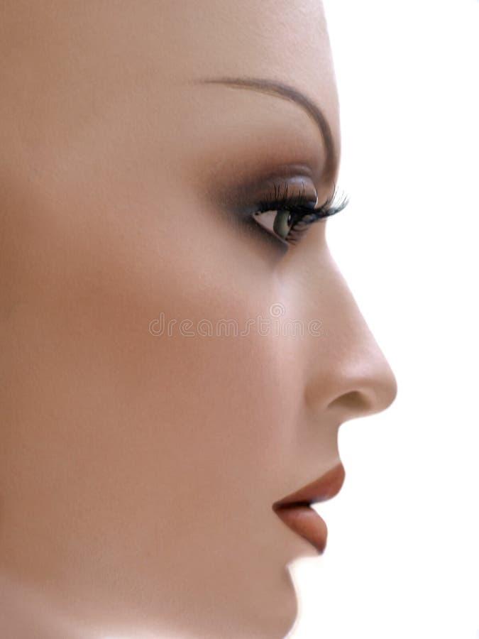 Mannequinen-Profil. lizenzfreie stockfotos
