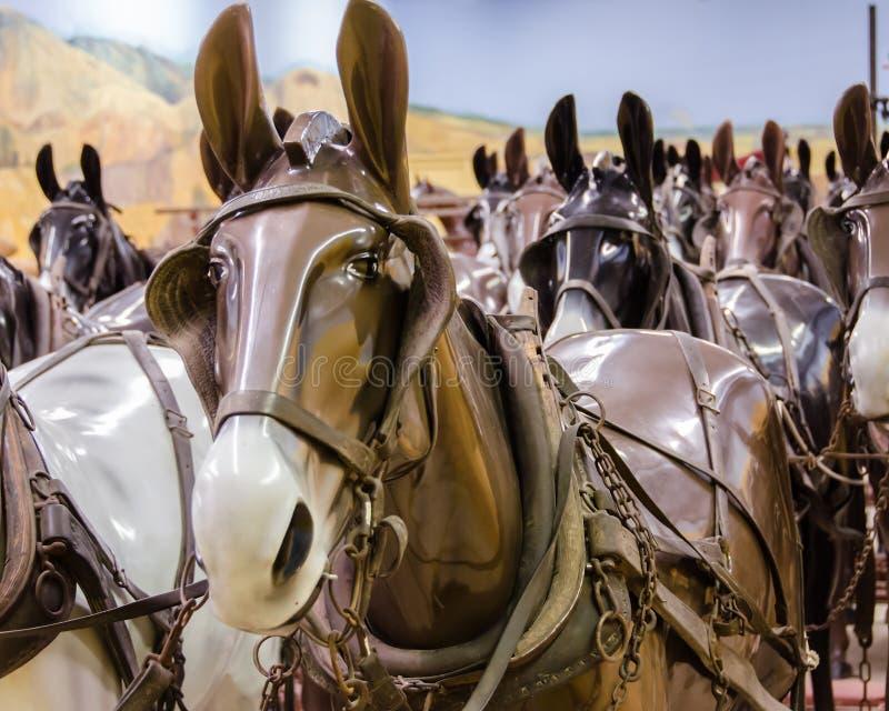 Mannequins de cheval images stock