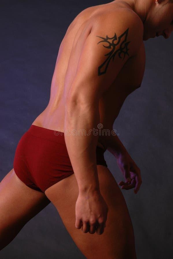 Mannetje met tatoegering stock afbeeldingen