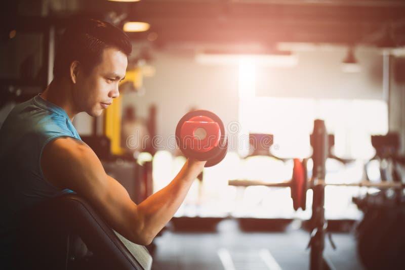 Mannhandholding-Dummkopfübung in der Turnhalle Muskulöser Körper der Eignung mit Satz schwarzen Gewichten im Turnhallenhintergrun lizenzfreies stockbild
