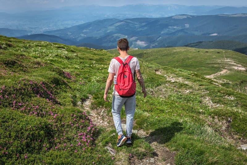 Mannreisender mit Rucksack in den Bergen Sommer outsid gehend lizenzfreie stockbilder