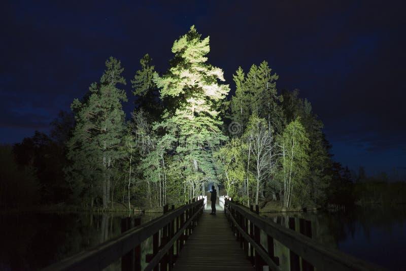 Mannstellung im Freien nachts dunkles gl?nzend mit Taschenlampe stockfotografie