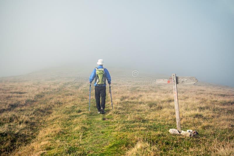 Manntrekking im Nebel lizenzfreie stockfotografie