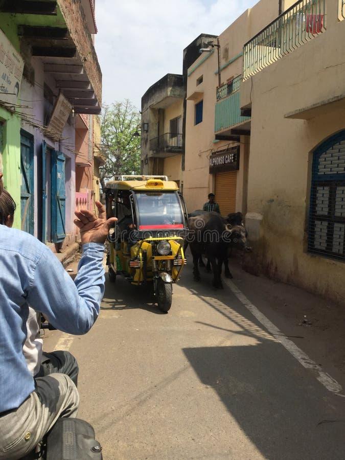 Mannwellen auf Moto-Taxi in Indien stockfoto