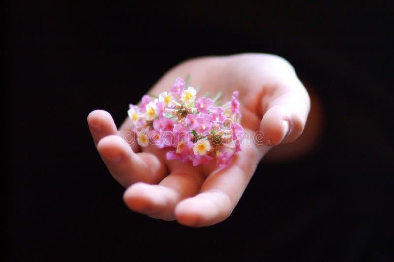 Mano 2 de las flores fotos de archivo