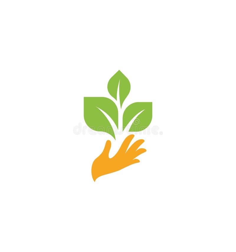 Mano arancio con le foglie verdi Germoglio, nuova vita Logotype dell'elemento della natura Segno agricolo del prodotto biologico  illustrazione di stock