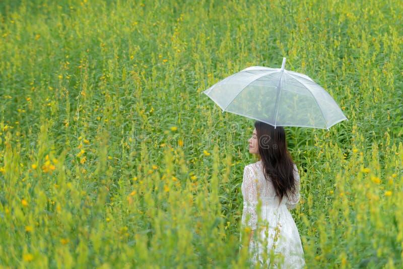 Mano asiática feliz de la forma de vida de la mujer que sostiene el paraguas en la salida del sol de la flor del amarillo del pra foto de archivo