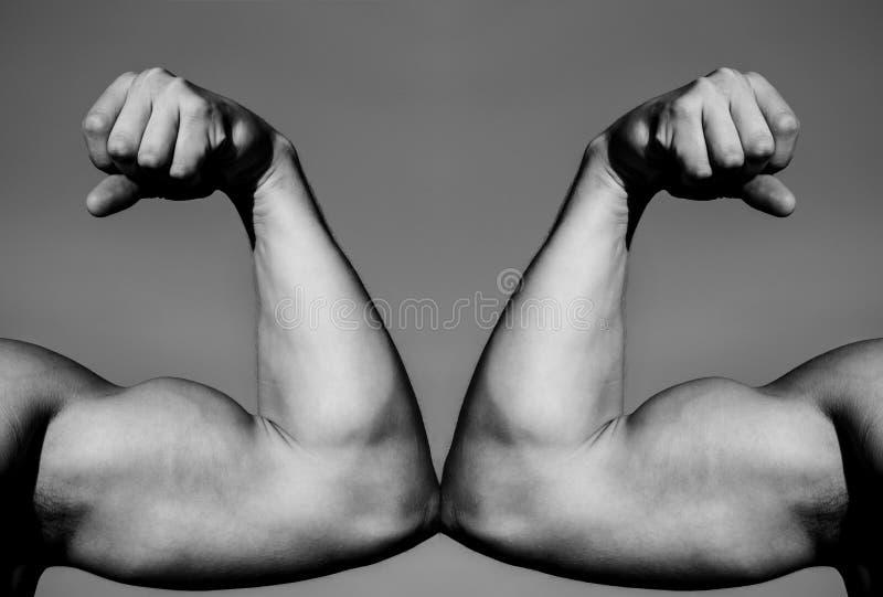 Mano, braccio dell'uomo, mano muscolare del pugno contro la forte mano Concorrenza, confronto di resistenza CONTRO Lotta duro Con fotografia stock