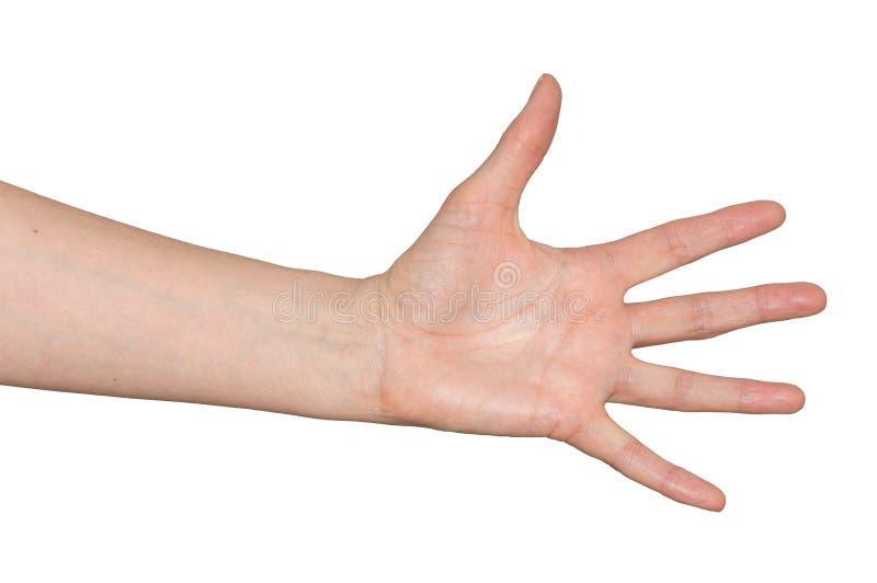 Mano caucásica del ` s de la mujer Fingeres separados aparte en gesto de desesperación imágenes de archivo libres de regalías