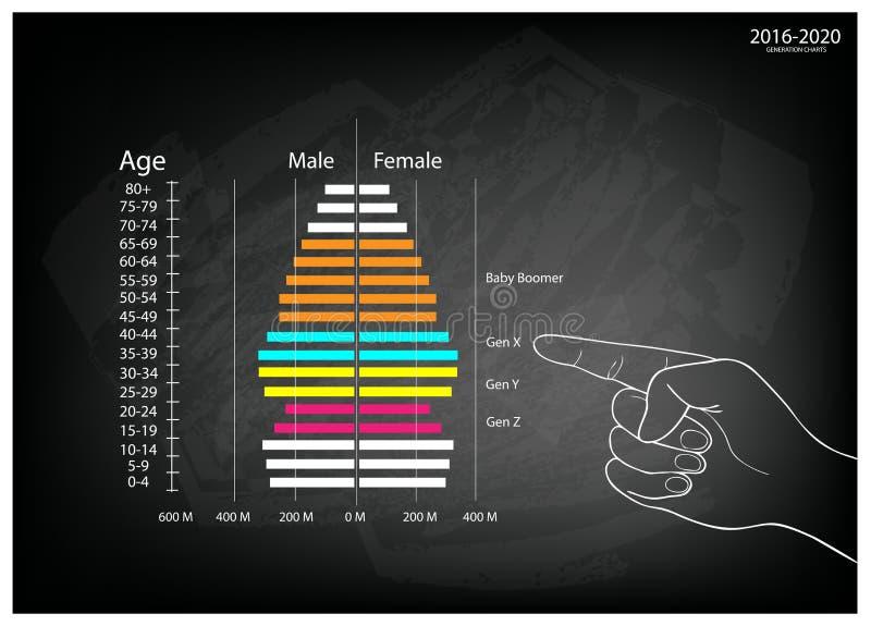 Mano che indica i grafici 2016-2020 delle piramidi delle età con la generazione 4 illustrazione vettoriale