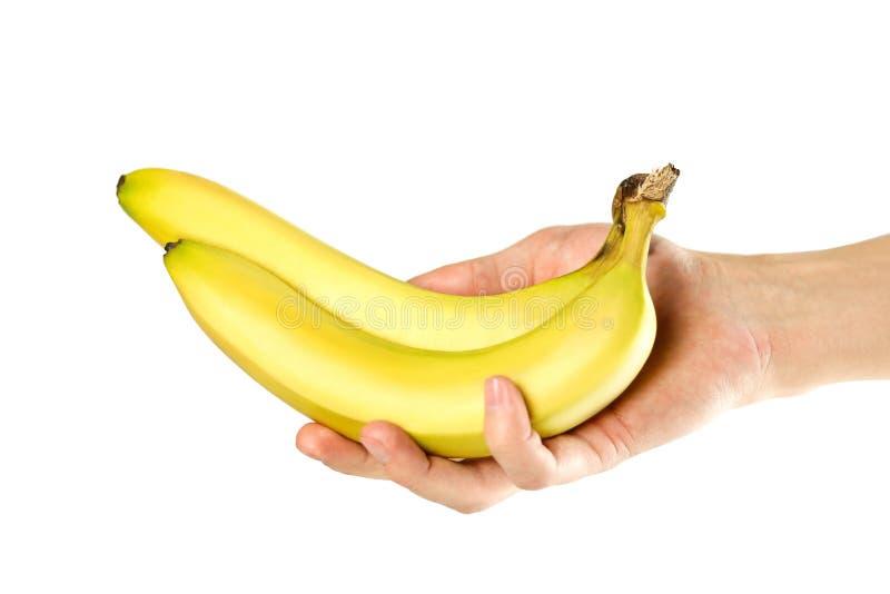 Mano che tiene due banane Fine in su Isolato su priorit? bassa bianca immagini stock libere da diritti