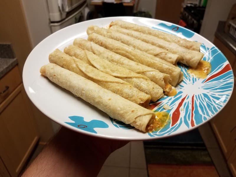 Mano che tiene i taquitos sul piatto in cucina fotografia stock libera da diritti