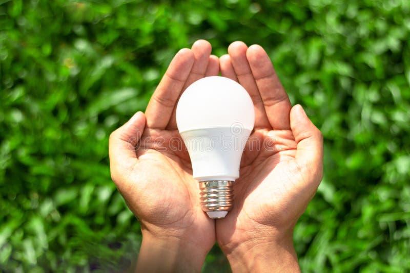 Mano che tiene la lampadina del LED con illuminazione sul fondo verde della natura fotografia stock