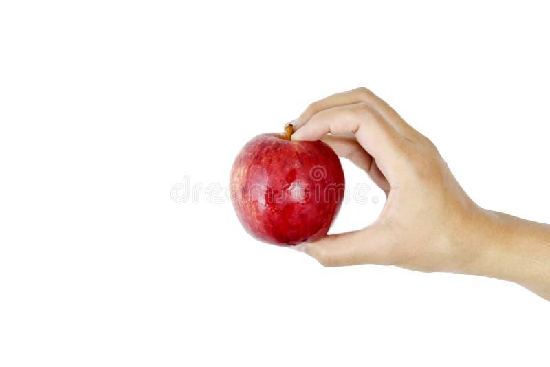 Mano che tiene mela rossa su fondo bianco fotografia stock