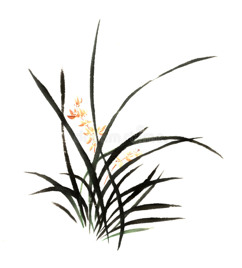 Mano-China decorativa magnífica distinguida tradicional china, orquídea de la tinta stock de ilustración