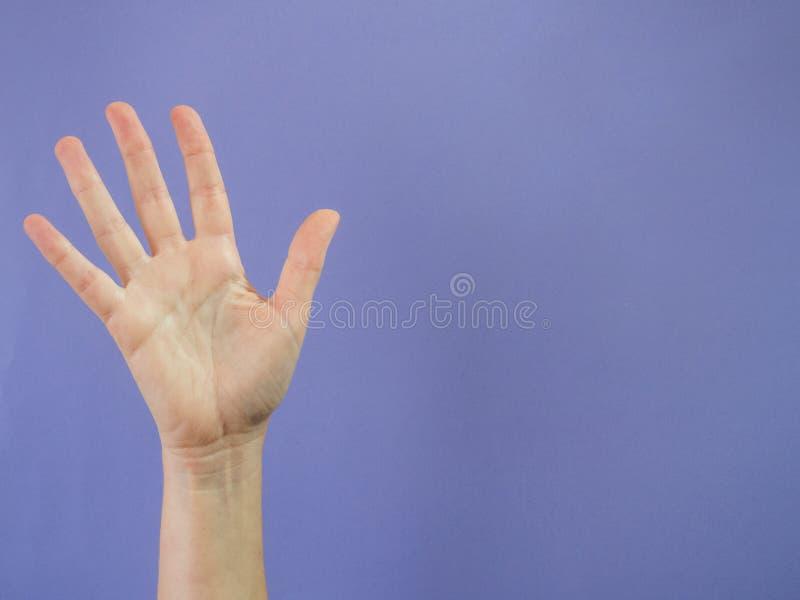Mano con cinco fingeres aumentados en púrpura y espacio de la copia fotografía de archivo libre de regalías