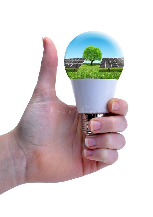 Mano con el pulgar que detiene el bulbo del eco LED con el panel solar aislado en un fondo blanco fotos de archivo