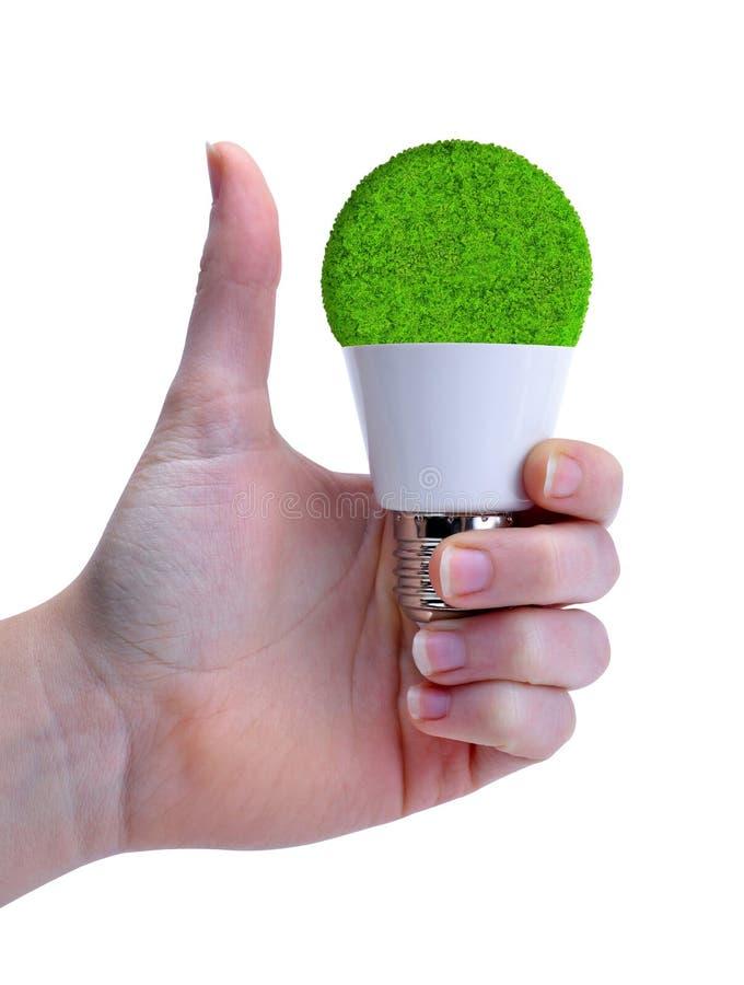 Mano con el pulgar que detiene un bulbo del eco LED aislado fotografía de archivo libre de regalías