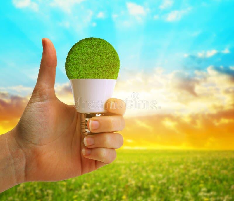 Mano con el pulgar que detiene un bulbo del eco LED en la puesta del sol foto de archivo
