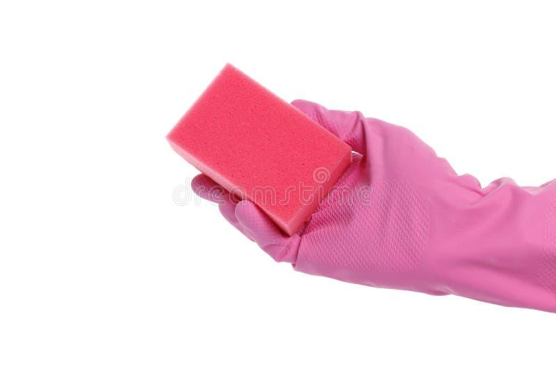 Mano con guantes que sostiene una esponja aislada en el fondo blanco fotografía de archivo