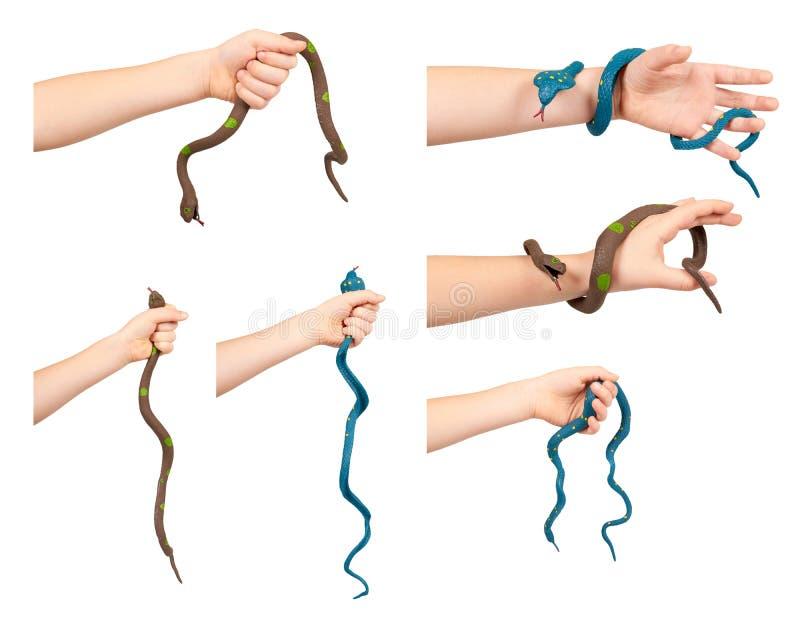 Mano con la serpiente del juguete, juego de diversi?n, animal falso, peligro y miedo, sistema y colecci?n fotografía de archivo libre de regalías