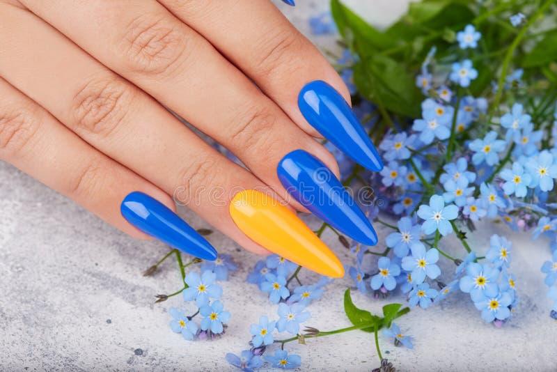 Mano con los clavos manicured artificiales largos coloreados con el esmalte de uñas azul y anaranjado foto de archivo libre de regalías