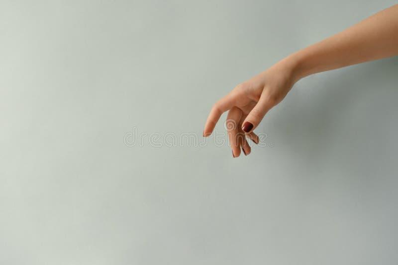 Mano con los clavos manicured en un fondo en colores pastel en blanco imagenes de archivo