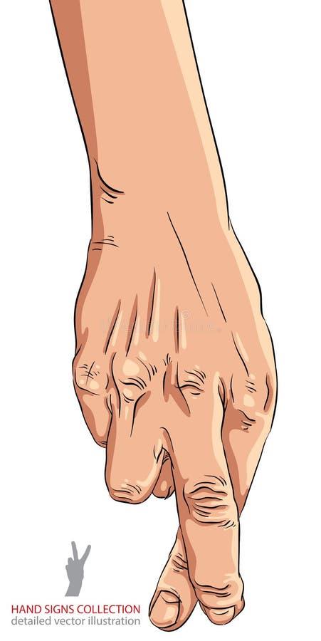 Mano con los fingeres cruzados, ejemplo detallado del tramposo del vector ilustración del vector
