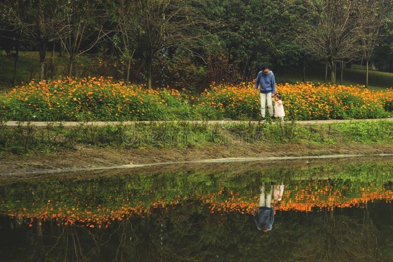 Mano de la hija de la tenencia de la mamá que camina a un lado el lago con la reflexión imágenes de archivo libres de regalías