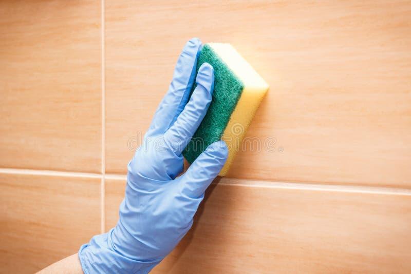 Mano de la mujer mayor que lava y que limpia las tejas del cuarto de baño usando la esponja, concepto de los deberes del hogar foto de archivo libre de regalías