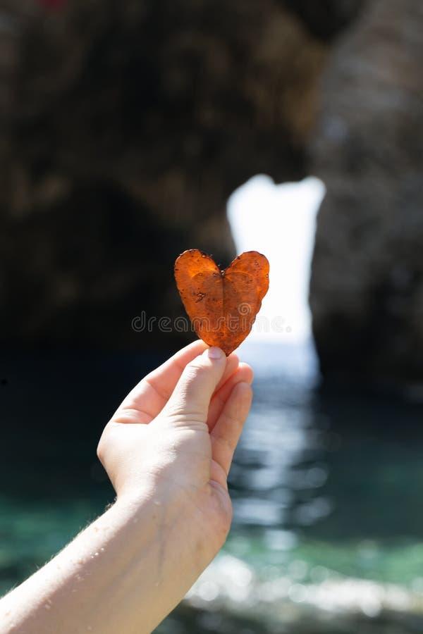 Mano de la mujer que lleva a cabo licencia en forma de corazón foto de archivo libre de regalías