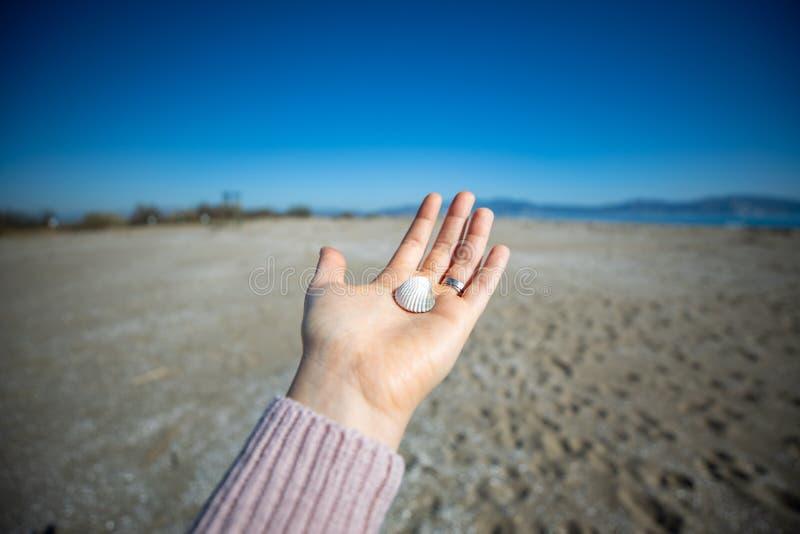 Mano de la mujer que lleva a cabo una cáscara del mar con el faro borroso en el fondo imagen de archivo libre de regalías