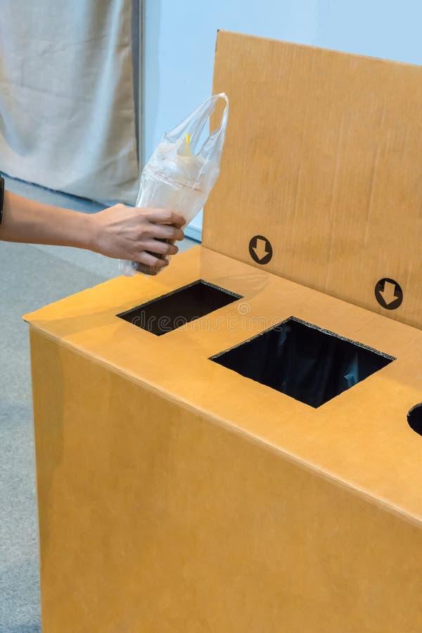 Mano de la mujer que pone la taza plástica usada en el compartimiento reciclado hecho del re fotos de archivo