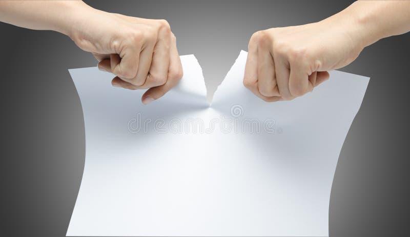 Mano de la mujer que rasga el Libro Blanco en fondo gris fotos de archivo