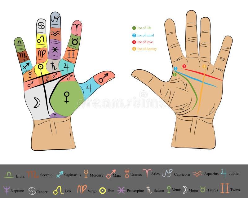 Mano de la quiromancia infographic ejemplo del dibujo del vector de la quiromancía libre illustration