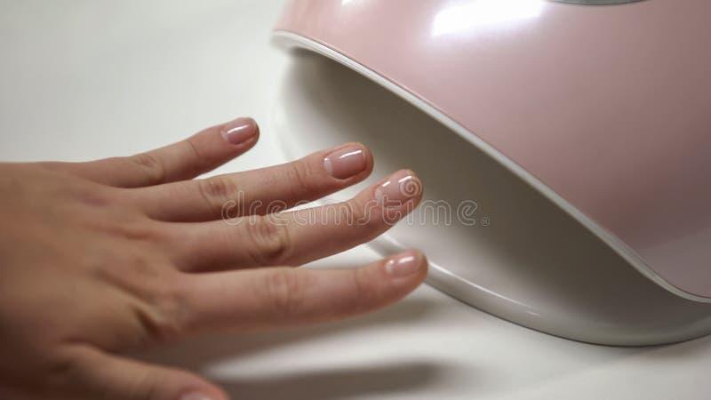 Mano de la tenencia del cliente del salón de la manicura en la lámpara del LED, secando al esmalte de uñas del gel, belleza fotografía de archivo