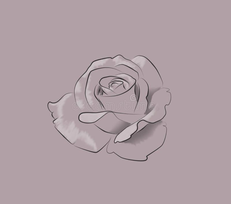 Mano de libro de colorear de Rose Flower Monochrome Drawing For Simp dibujado ilustración del vector