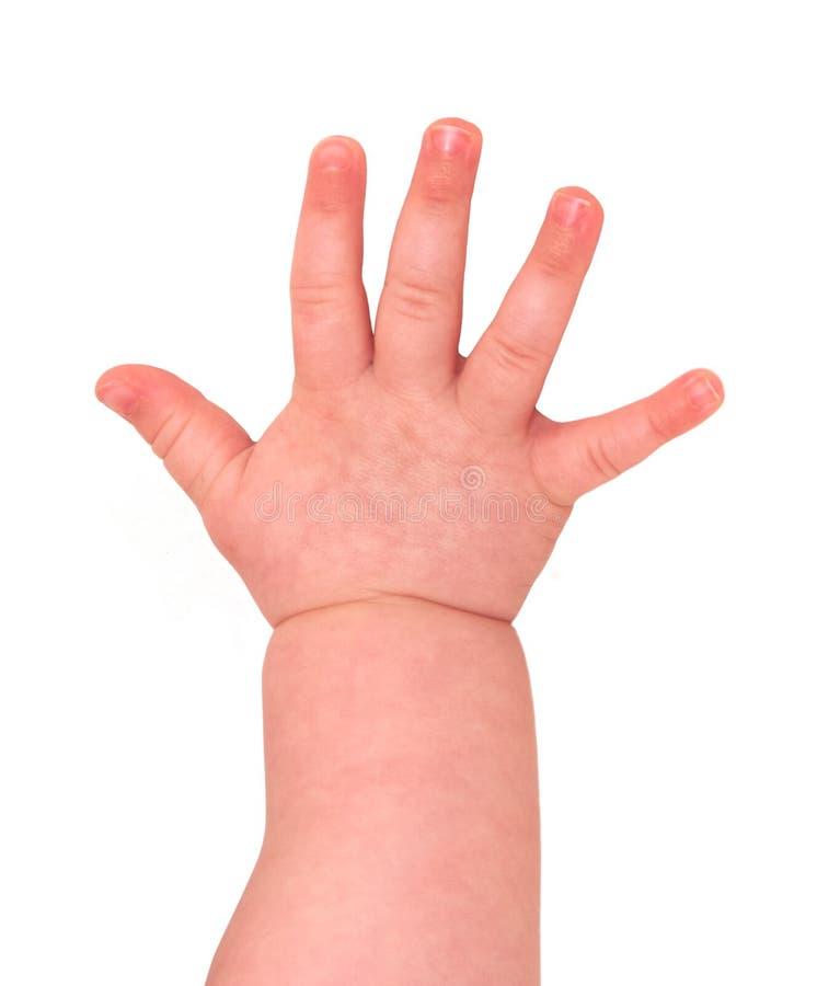 Mano del bebé foto de archivo libre de regalías